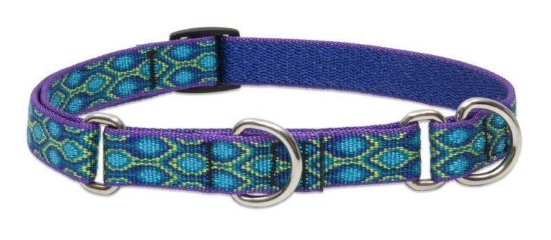 LupinePet Originals Martingale Dog Collar - Rain Song, Medium and Large Dogs, 14 to 20""