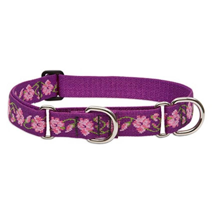 LupinePet Originals 1 Rose Garden 19-27 Martingale Collar for Large Dogs