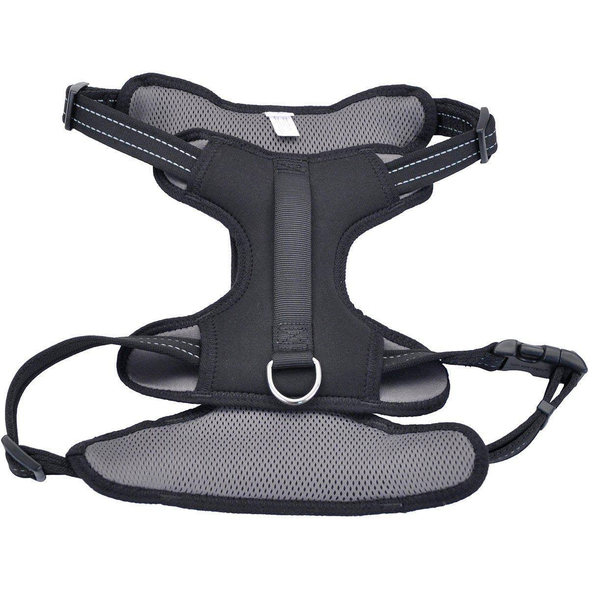 Coastal Reflective Control Handle Harness - Black, X-Large