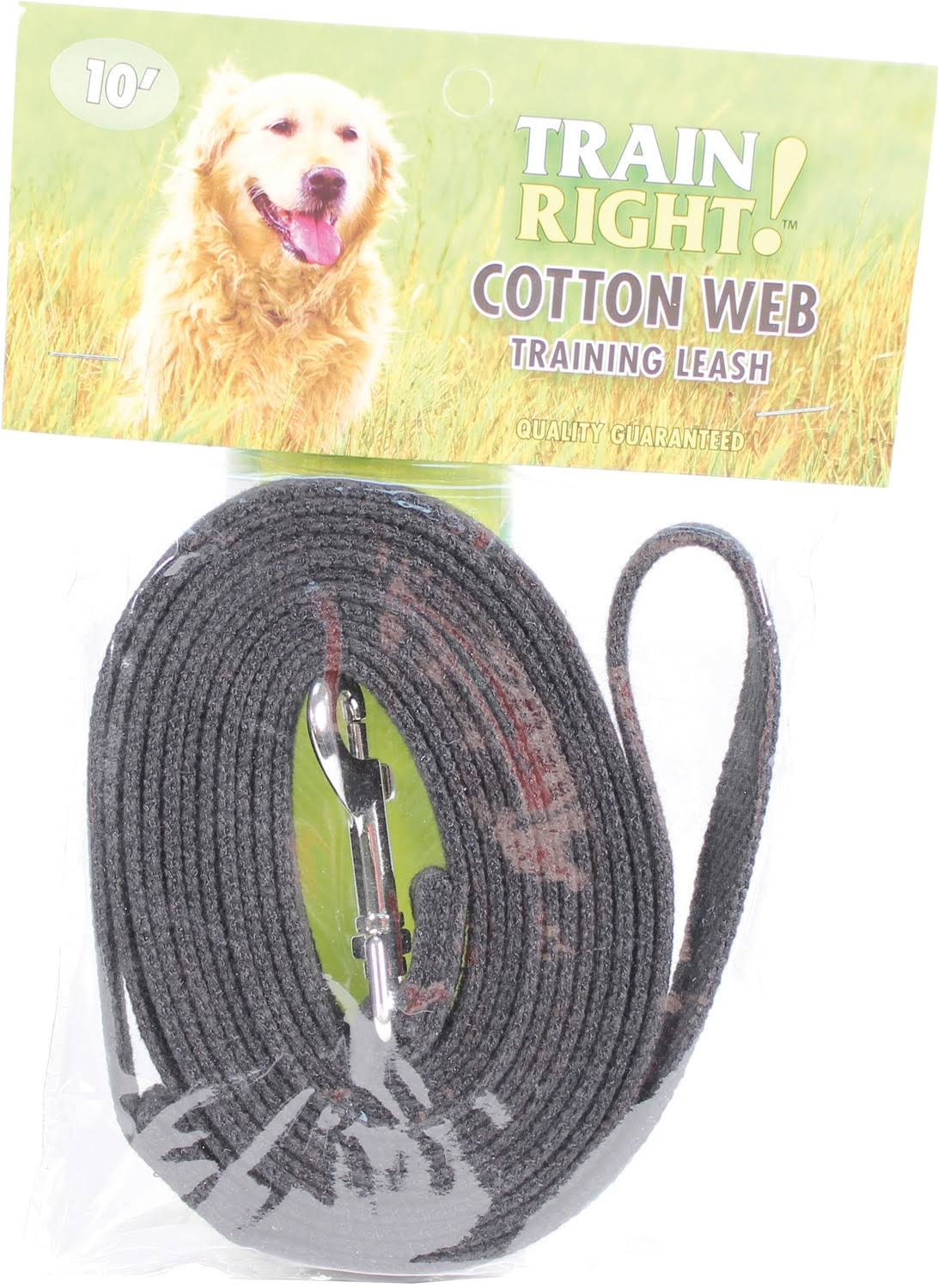 Coastal Cotton Web Training Dog Leash - Black, 10'