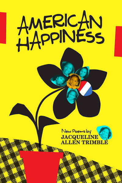 American Happiness [Book]