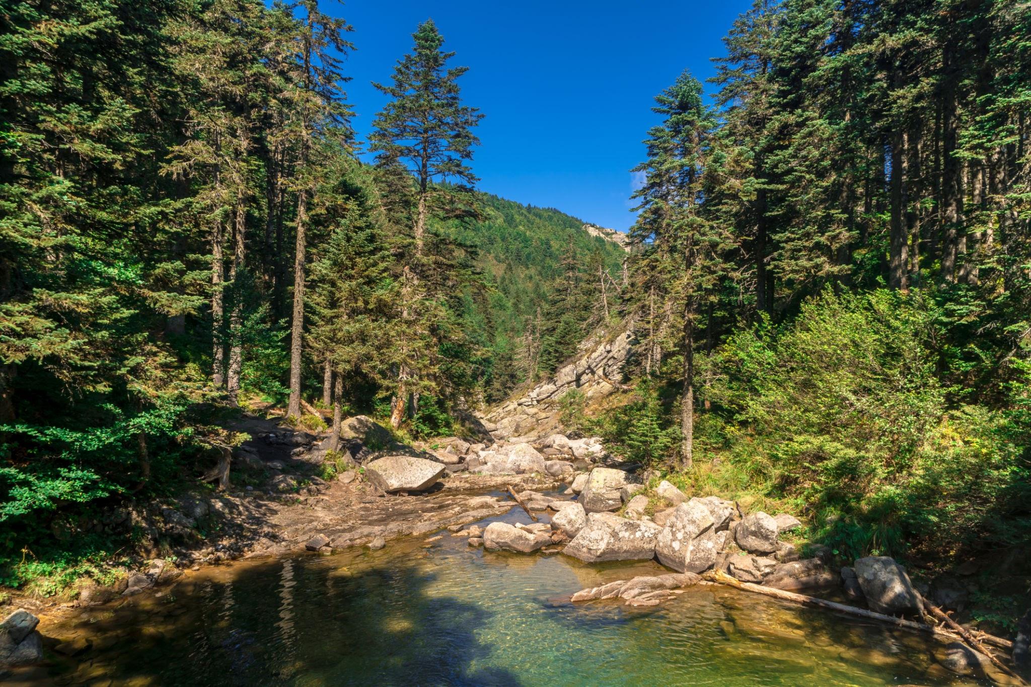 Uludag National Park