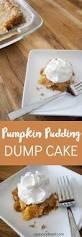 Cake Mix And Pumpkin by Pumpkin Pudding Dump Cake