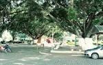 imagem de Descoberto Minas Gerais n-8