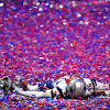 Predicting all 12 NFL playoff teams and the Super Bowl 54 winner