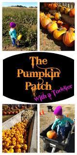 Pumpkin Patch North Bend Oregon by 46 Best Us State U0026 National Parks Images On Pinterest Usa Travel