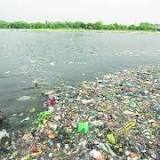 Haridwar, Sivananda Saraswati, Ganges, Tapas