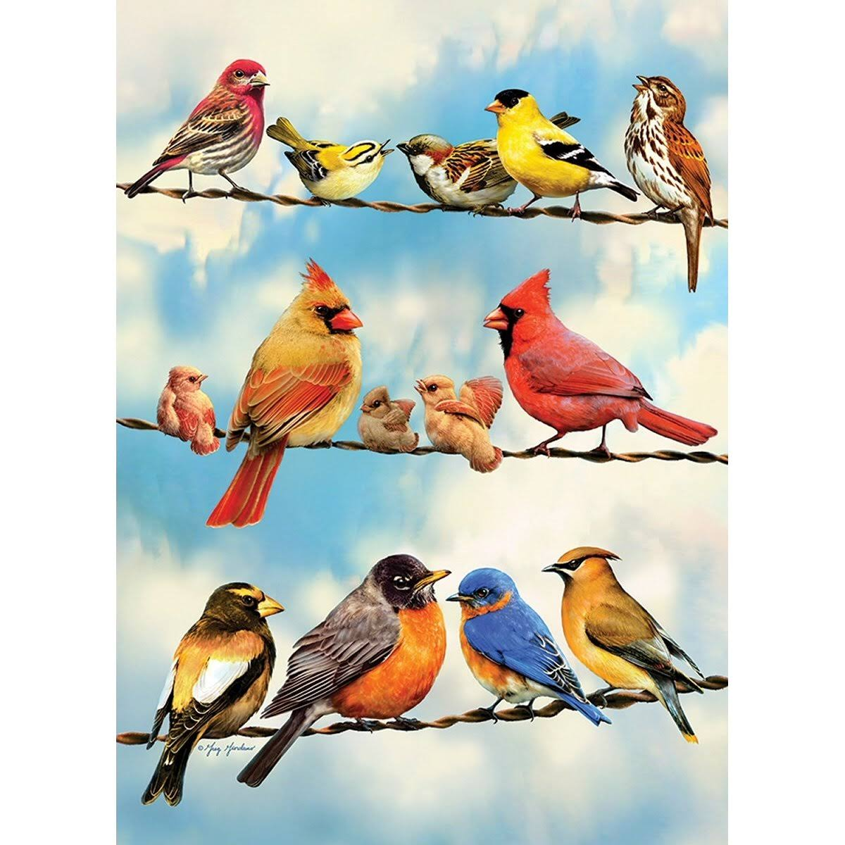 Outset Media Games OM58888 Blue Sky Birds Puzzle Tray, 35 Piece