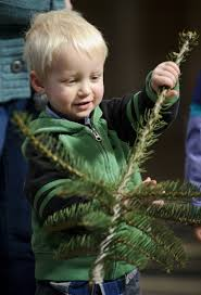 Christmas Tree Farms Near Lincoln Nebraska by State Christmas Tree Makes Its Journey From Farm To Capitol