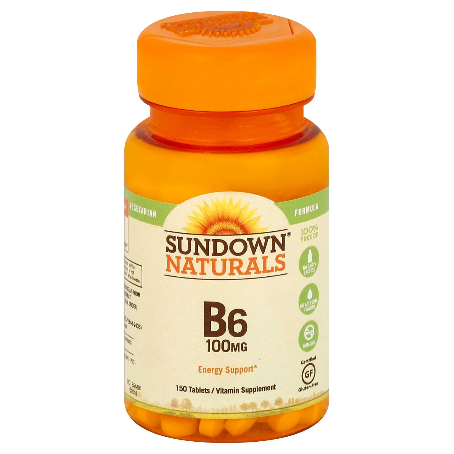 Sundown Naturals Vitamin B6 Supplement - 100mg, 150 Tablets