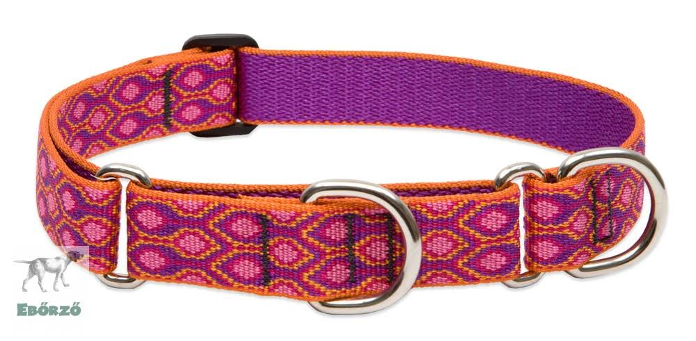 Lupinepet Martingale Combo Dog Collar - Alpen Glow, Large