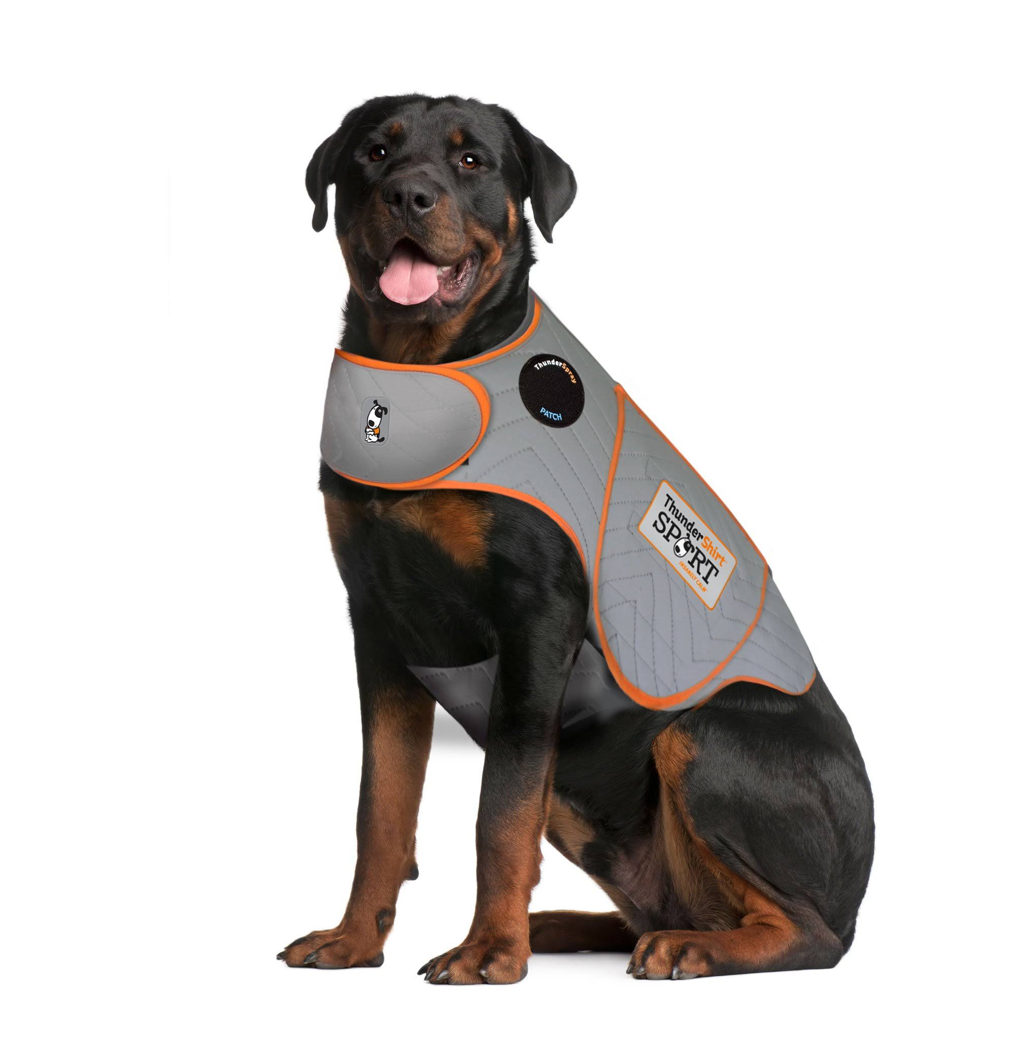Thundershirt Sport Anxiety Jacket for Dogs Platinum / 2XL