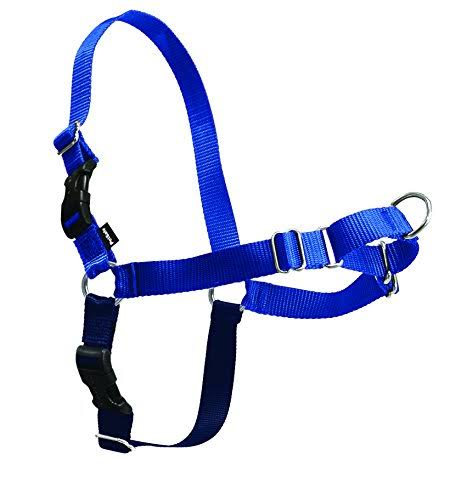 PetSafe Easy Walk Harness - Royal Blue & Navy Blue
