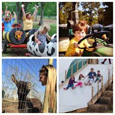 Free Pumpkin Patch Houston Tx by Blessington Farms Pumpkin Patch And Fall Festival Kids Out And