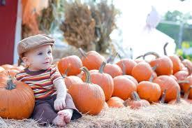 White Oak Pumpkin Patch by 2015 Pumpkin Patches In Austin And Beyond Free Fun In Austin