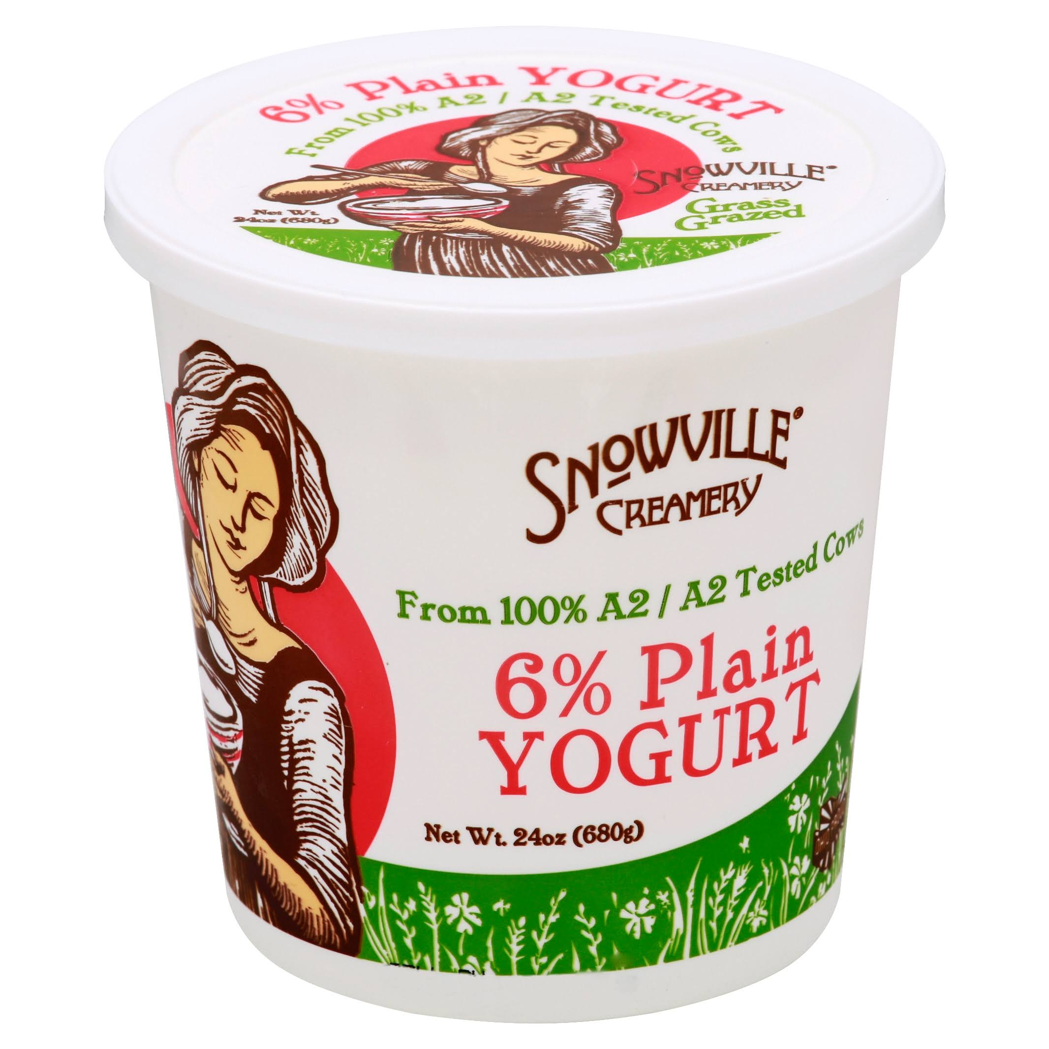 Snowville Creamery Yogurt, 6% Plain - 24 oz
