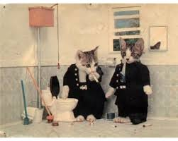 صور قطط مضحكة 2013 - اجمل و اروع صور مضحكة عن القطط 2013 images?q=tbn:ANd9GcRhL4uCxNL6P3MaCocCCEa6qFb9ovyA_o2PJRPH8WX-4Q5OFGrdsw
