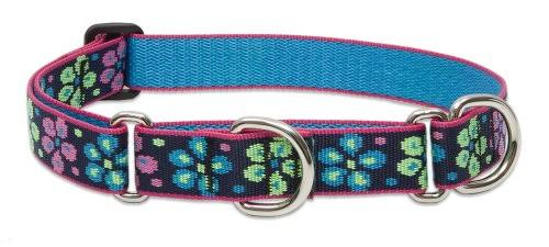 Lupine Flower Power Martingale Combo Collar for Large Dogs - 1in W, 19in to 27in Neck