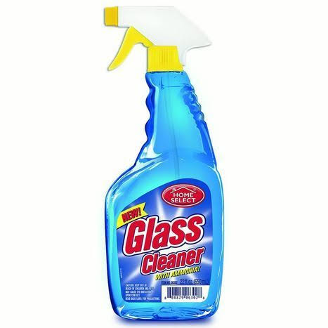 Glass Cleaner with Ammonia - 22 oz bottle