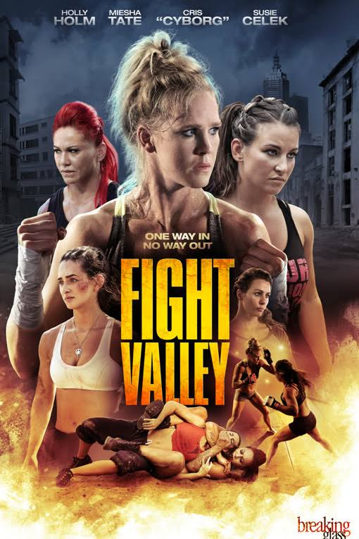 Fight Valley-Fight Valley