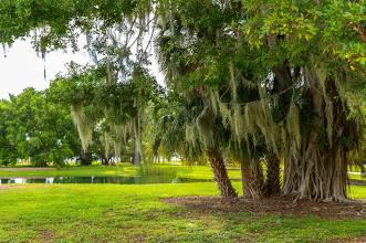 Lake Nona Florida Real Estate