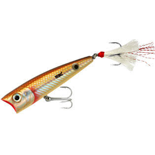 Rebel Super Pop-R 5/16 oz Fishing Lure - Redfish