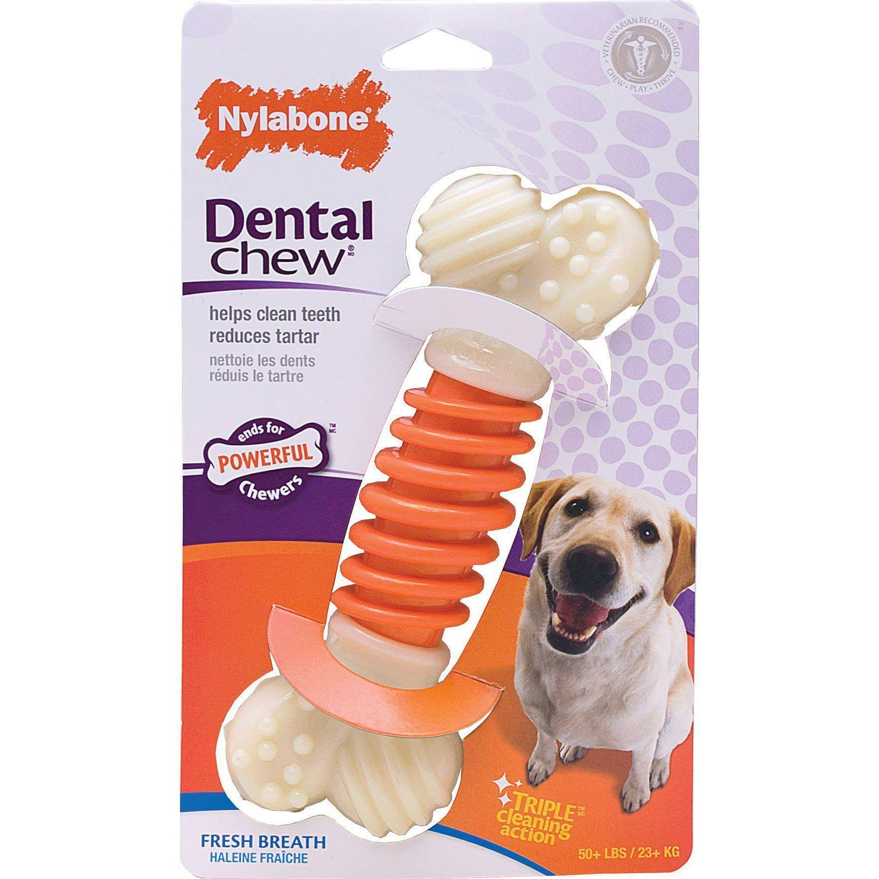 Nylabone Pro Action Dental Bone Dog Chew Toy - Large, Bacon Flavored