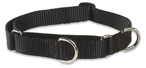 Lupine Combo Collar For Dogs - Medium to Large, Black