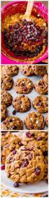 Cake Mix And Pumpkin by Best 25 Pumpkin Cookies Ideas On Pinterest Pumpkin Cookie