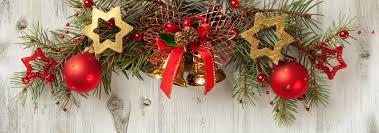 Christmas Tree Has Aphids by Bugs Canton Georgia Termite U0026 Pest Control