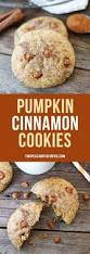 Pumpkin Spice Snickerdoodles Pinterest by 1799 Best Cookies Images On Pinterest Chocolate Chips Cookie