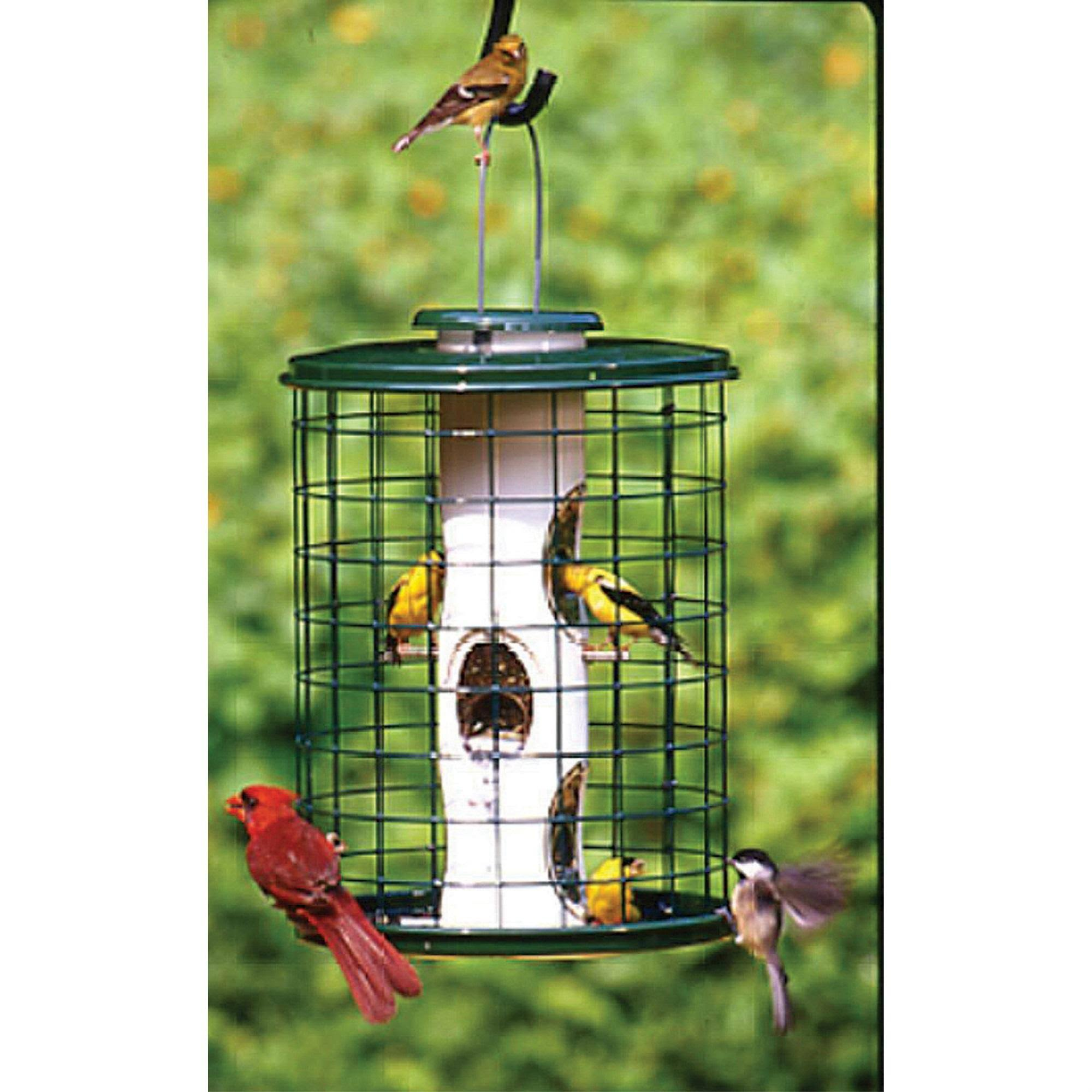 Avian Series Mixed Seed Cage Bird Feeder