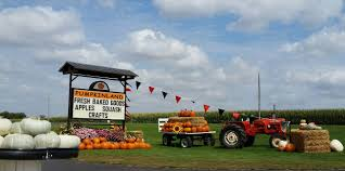 Southwest Ohio Pumpkin Patches by Don U0027t Miss These 10 Great Pumpkin Patches In Iowa This Fall