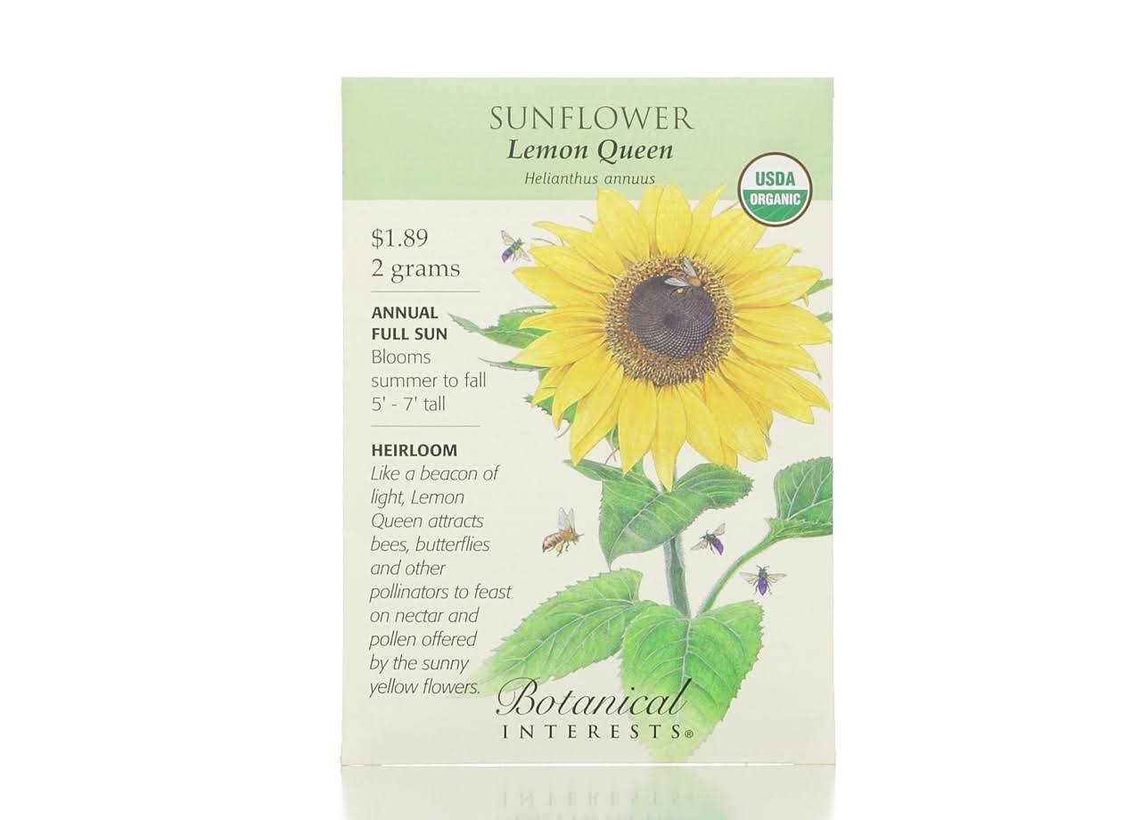 Hirt's Gardens Lemon Queen Sunflower Seeds - 2g