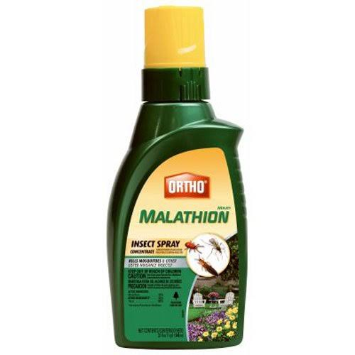 Ortho Max Malathion Concentrate Insect Spray - 32oz
