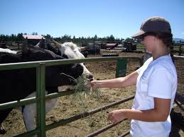 Pumpkin Patch North Bend Oregon by 10 Places To Go In Bend If You U0027re An Animal Nut Bend Oregon Blog
