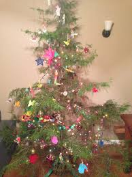 Christmas Tree Species Name by Redcedar Christmas Trees U2013 10 Facts