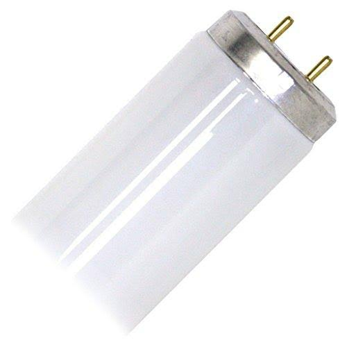Philips T12 Medium Bi-Pin Fluorescent Tube Light Bulb