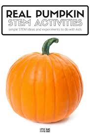 Steps To Carve A Pumpkin Worksheet by Mini Pumpkin Volcanos Fall Science Experiment For Kids