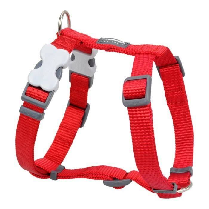 Red Dingo Classic Harness - Red, 15mm