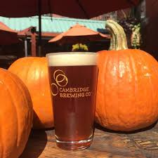 Whole Hog Pumpkin Ale Stevens Point Brewery by All The Pumpkin Beers Actually Worth Trying This Fall Junk Host