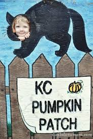 Boos Pumpkin Patch Nebraska City by 23 Best Pumpkin Patches Images On Pinterest Pumpkin Patches