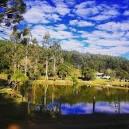 imagem de Mandirituba Paraná n-16