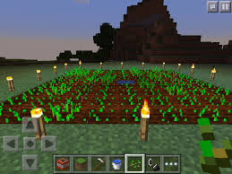 Minecraft Grow Pumpkins Fast by The Importance Of Light Level On Minecraft Farming U2013 Phoneresolve