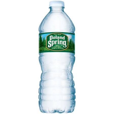 Poland Spring Natural Spring Water - 500ml