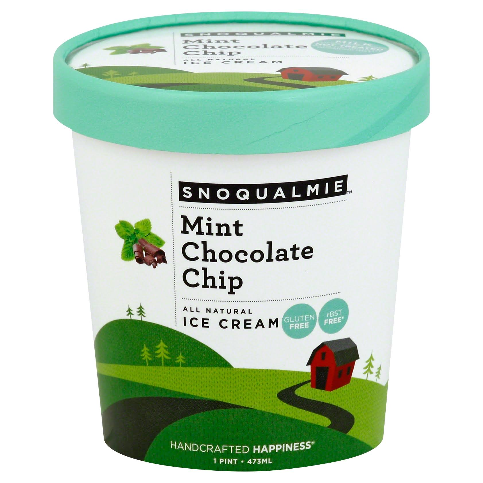 Snoqualmie Ice Cream - Mint Chocolate Chip, 1 Pint