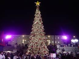 Christmas Tree Amazonca by Christmas Traditions Wikipedia
