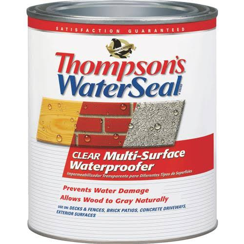Thompson's Water Seal Multi-Surface Waterproofer - Clear