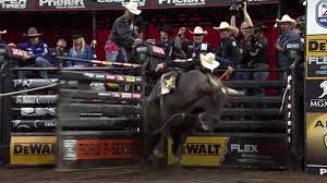 Free Pumpkin Patches In Colorado Springs by Professional Bull Riders To Compete In Colorado Springs For 2017