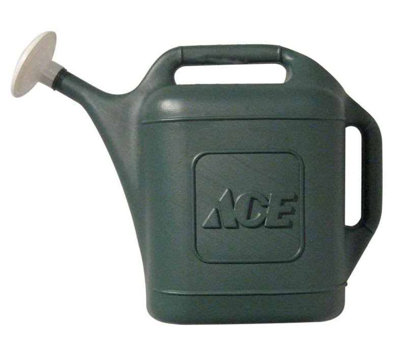 Ace Watering Can - 2gal